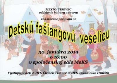 30.1.2019 DETSKÁ FAŠIANGOVÁ VESELICA, Tisovec