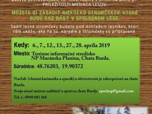 Apríl 2019 ZASAĎ SI SVOJ STROM II., Burda – Tisovec