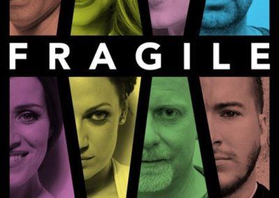 Koncert slovenskej vokálnej skupiny FRAGILE, Tisovec
